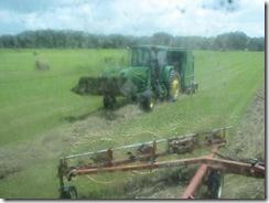 farming 004