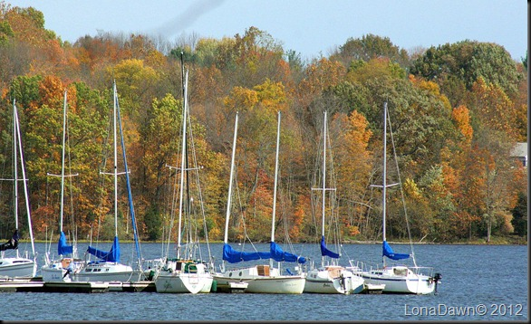 Saltfork_Lake_Sailboats