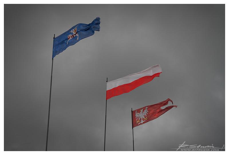 Grunwald. Chorągwie niczym sześć stuleci temu powiewają na wietrze.