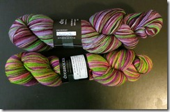 Dyeabolical Yarn