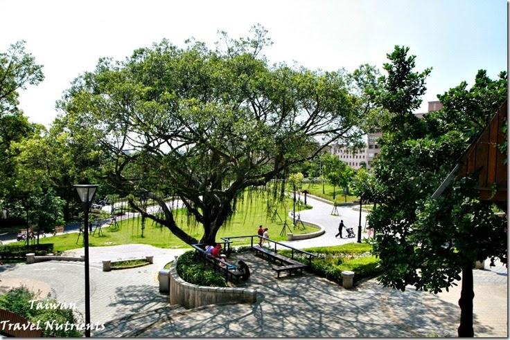 桃園奧爾森林學堂 (52)
