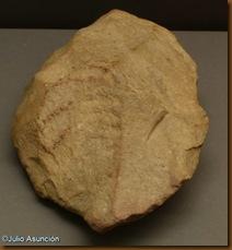Bifaz de Lumbier - Museo de Navarra