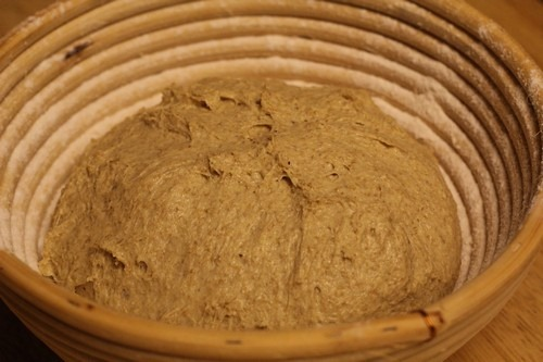 einkorn-bread-sponge14