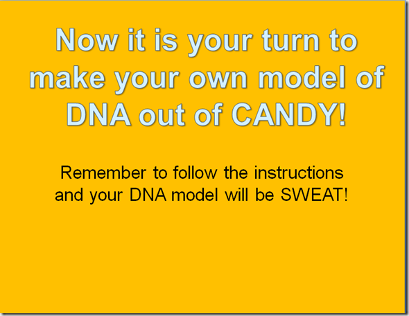 dna model project instructions