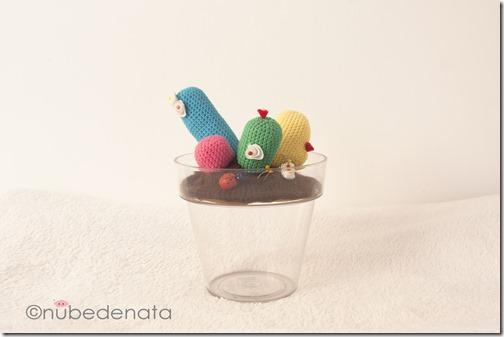 Cactus maceta_01