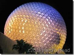 Florida 2011 521