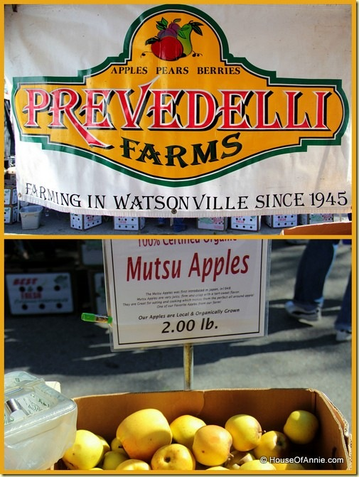 Prevedelli Farms apple stand at Saratoga Farmer's Market