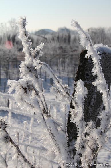 sneeuw Febr 2012 037