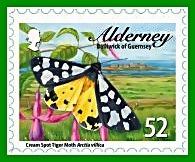 alderney b