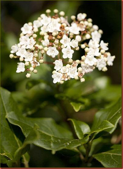 Spring 201224