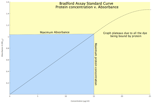 Bradford assay graph