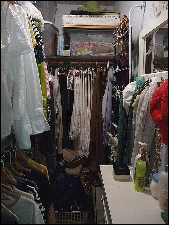 2012 Closet BEFORE Purge 004
