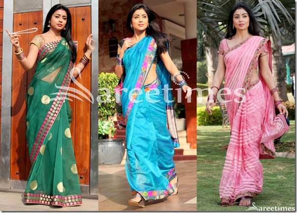 Shriya_Saran_Latest_Sarees