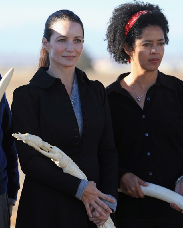 Actress Kristin Davis and Paula Kahumbu attend the U.S. Ivory Crush at the Rocky Mountain Arsenal Wildlife Refuge on 14 November 2013 in Commerce City, Colorado. Photo: Doug Pensinger / Getty Images