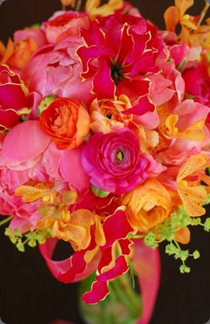 40559_423183940956_8091884_n flora bella