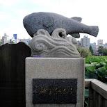 ueno fish in Ueno, Tokyo, Japan
