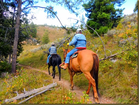 horse riders on trail-