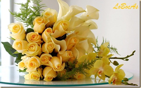 floresamarillas-LoBocAS-04