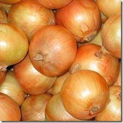 Fresh_Onions_640