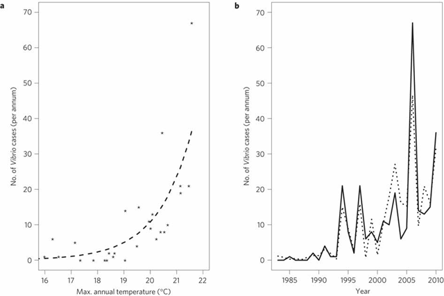 a, The relationship between Vibrio infections reported around the Baltic Sea area and maximum annual SST. Stars show observed data, dashed line shows GLM model predictions (based on the influence of SST alone). b, Time series of Baltic Sea Vibrio cases. Solid line shows observed cases and dotted line shows GLM model predictions based on the influence of maximum SST and time. Baker-Austin, et al., 2012