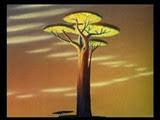 5-1 l'arbre