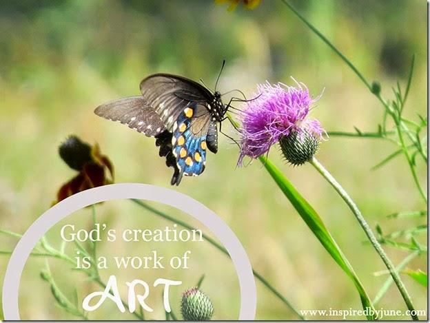 Butterfly_WorkofArt