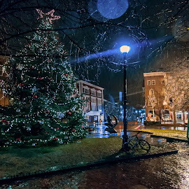 Evening in downtown salem park,  Christmas tree lights in rain Salem mass rain   by Marie Pelletier - City,  Street & Park  City Parks ( lighted christmas tree, reflection, park, puddles, falling rain, lighted street light, buildings, night, architecture, rain, bicycle )