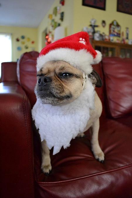 Santa-Claus-l