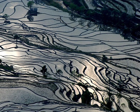 yuanyang-rice-terraces-sunset