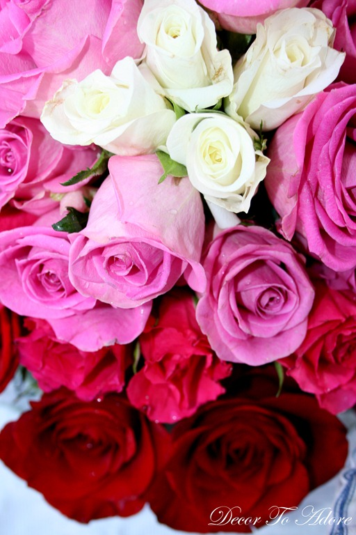 flowers 023-1