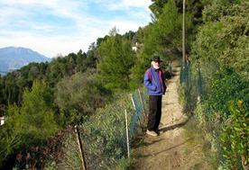 A woodsy walk 03