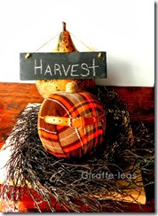 plaid pumpkin 2
