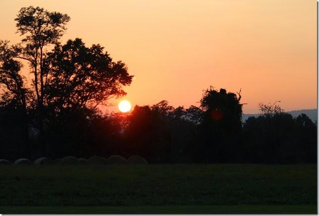 sunsetwoodgrove