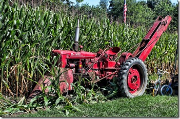 National Pike Antique Tractor show 8