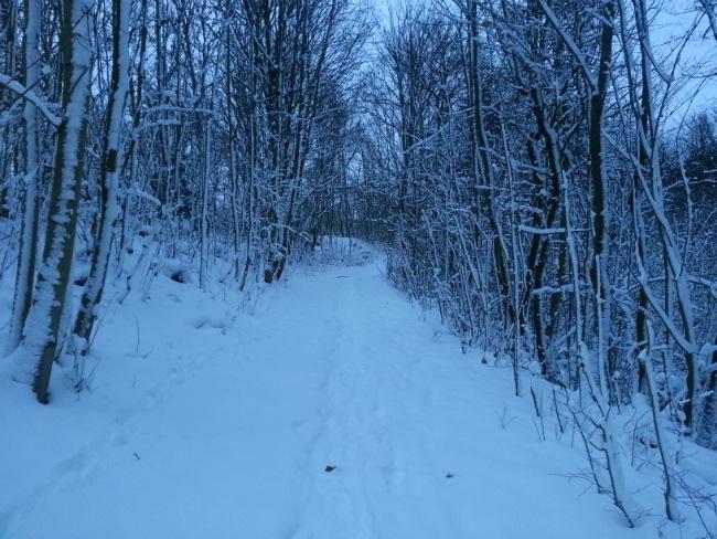 Sne på Volden, 10. december 2012 - fra Anders' tur hjem