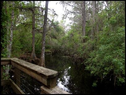 Gainesville to Hawthorn Bike Trail 161