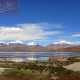 Arica - Parque Nacional Lauca  (35 de 48).jpg