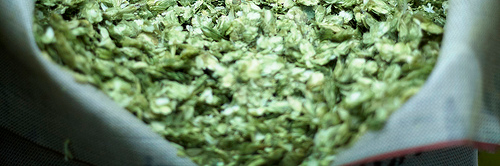 image sourced from Portlandbeer's Flickr account