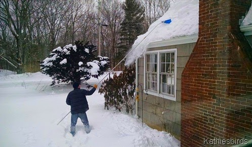 9.. raking the roof 2-14-15