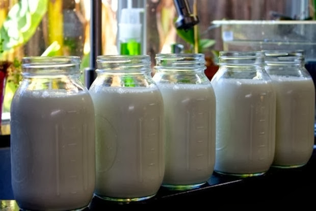 Καινοτόμα προσπάθεια στη Λάρισα με φθηνό γάλα απ' ευθείας από τους παραγωγούς