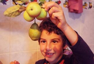 manzanas b