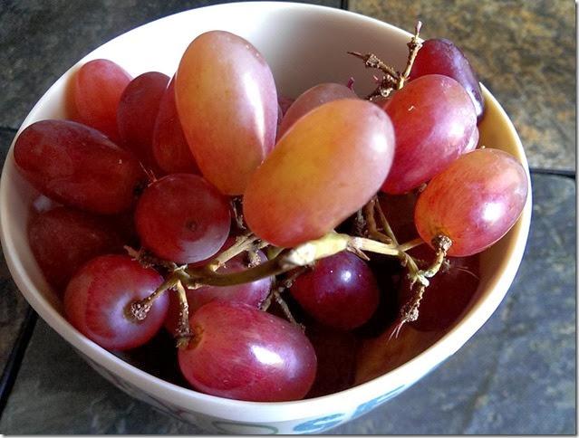grapes-public-domain-pictures-1 (2275)