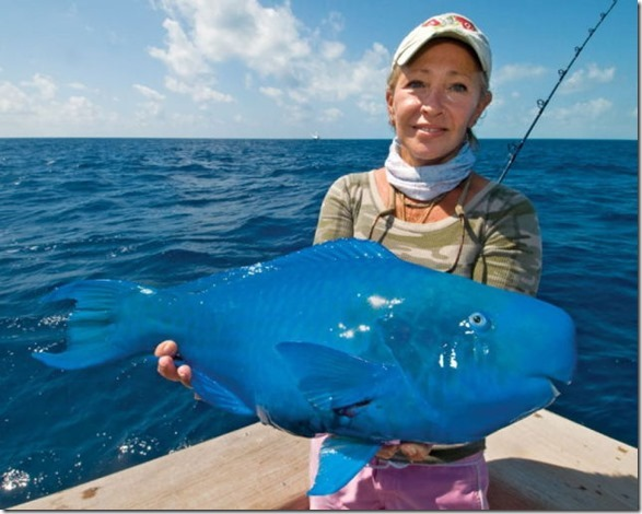 big-fish-fishing-1