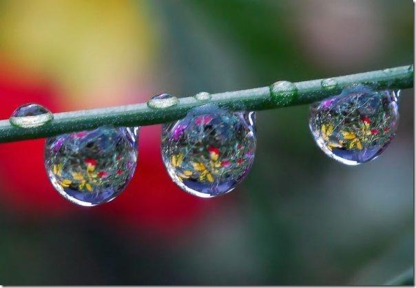 gota de agua (2)