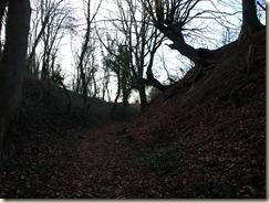 Bevingen:  een holle weg naast het militair domein