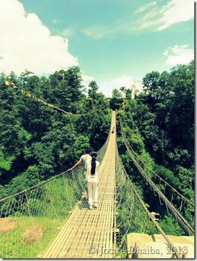Roshi-River-Bridge