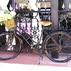 Old  Fashing  bike by Jo Gonzalez - Transportation Bicycles ( bike, flowers, tearoom )