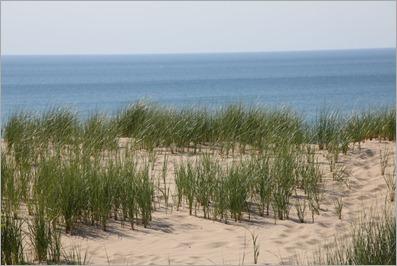 Indy Dunes