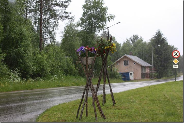 Finnskogen 011