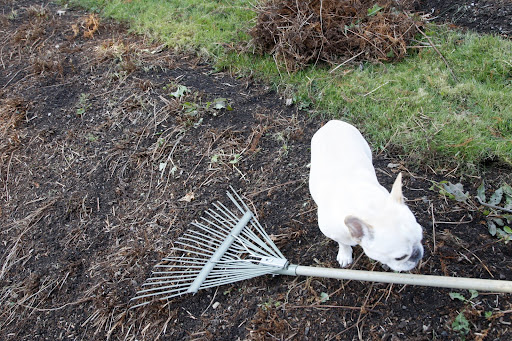 This rake looks a little heavy for me to handle - perhaps.......